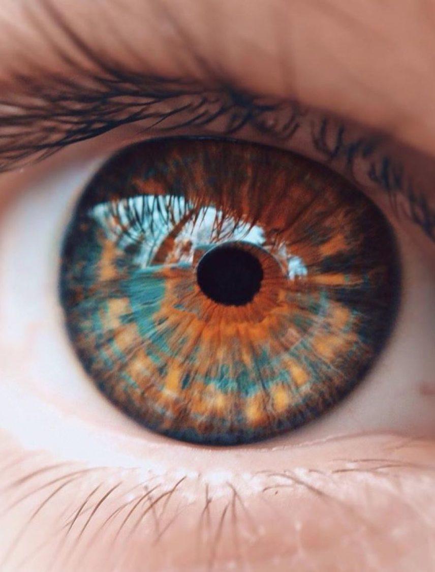 OCR - Neo Vision